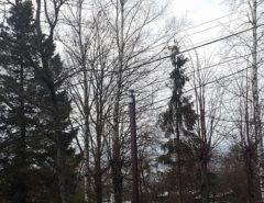 Уличная система видеонаблюдения (фото 1)