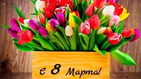 Поздравляем прекрасных дам с Международным женским днем!