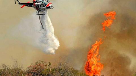 Обнаружение и методы тушения лесных пожаров